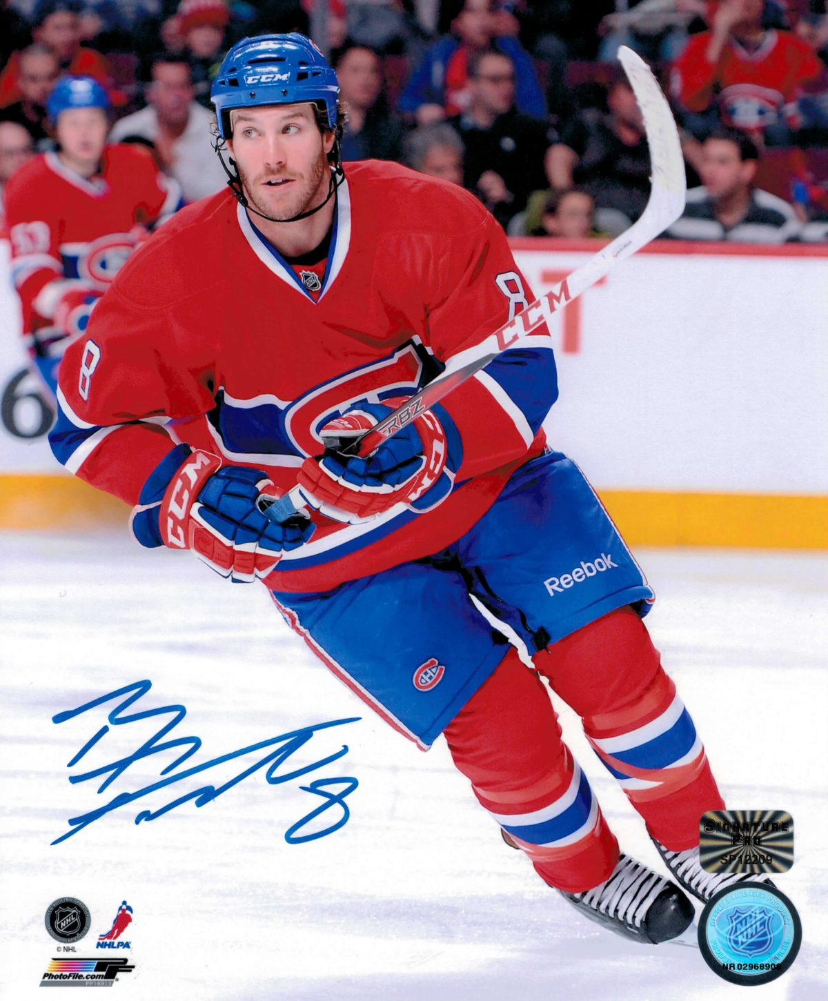 Prust 8x10 Red S